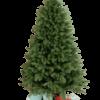 Brad de Craciun cu ace combinate 2D si 3D - GRAND ELITE - image siberian_green__1_-removebg-preview-100x100 on https://depozituldebrazi.ro